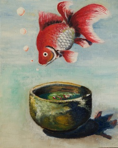 金魚と器の素材 [FYI00254528]