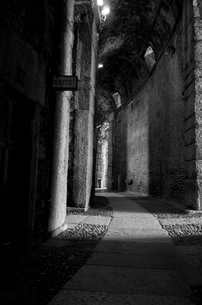 コロッセオ内部の写真素材 [FYI00254839]