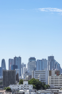 池袋方面から望む新宿の高層ビル群の写真素材 [FYI00254913]