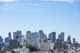 池袋方面から望む新宿の高層ビル群の写真素材 [FYI00254919]