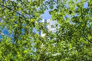品川グランドコモンズの高層ビルの素材 [FYI00254973]