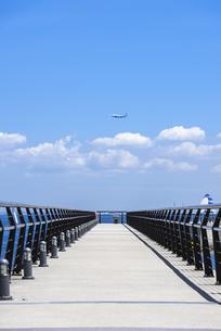 海辺の公園/東扇島東公園の遊歩道の写真素材 [FYI00255070]
