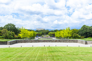 昭和記念公園の素材 [FYI00255075]