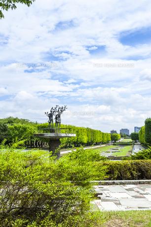 昭和記念公園の素材 [FYI00255085]