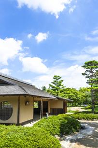 昭和記念公園の日本庭園の写真素材 [FYI00255088]