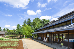 昭和記念公園のこもれびの里の素材 [FYI00255095]