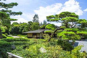 昭和記念公園の日本庭園の素材 [FYI00255105]