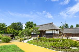 昭和記念公園のこもれびの里の素材 [FYI00255106]