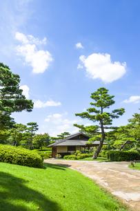 昭和記念公園の日本庭園の写真素材 [FYI00255107]