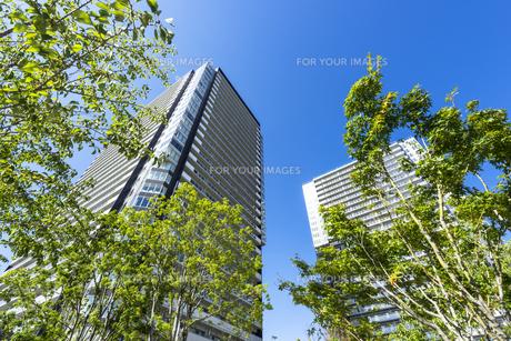 青空を背景にそびえ立つタワーマンションの写真素材 [FYI00255117]