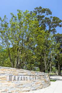 中野駅北口再開発エリア中野セントラルパーク/四季の森公園の写真素材 [FYI00255119]