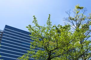 中野駅北口再開発エリア中野セントラルパークのオフィスビルの写真素材 [FYI00255121]