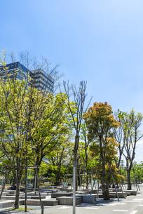 中野駅北口再開発エリア中野セントラルパーク/四季の森公園の写真素材 [FYI00255123]