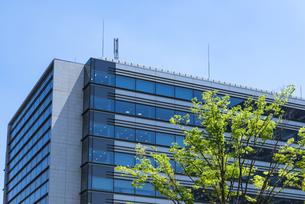 中野駅北口再開発エリア中野セントラルパークのオフィスビルの写真素材 [FYI00255124]