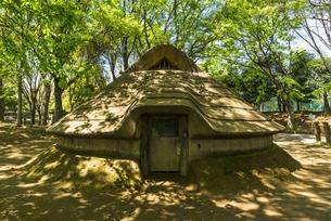 中野平和の森公園にある竪穴式住居の写真素材 [FYI00255143]