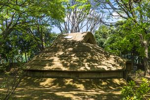 中野平和の森公園にある竪穴式住居の写真素材 [FYI00255145]