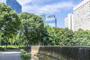 新宿中央公園の素材 [FYI00255211]