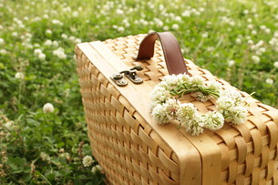 ピクニックの写真素材 [FYI00255240]