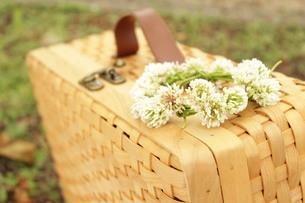 ピクニックの写真素材 [FYI00255241]