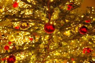 クリスマス・イルミネーションの写真素材 [FYI00255518]