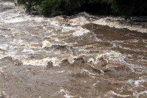 台風の集中豪雨の写真素材 [FYI00255641]