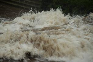台風の集中豪雨の写真素材 [FYI00255663]