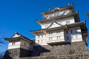 Odawara Castleの写真素材 [FYI00255749]