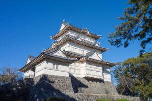 Odawara Castleの写真素材 [FYI00255763]