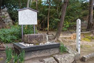 宮本武蔵腰掛石の素材 [FYI00255772]