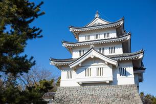 Oshi Castleの写真素材 [FYI00255777]