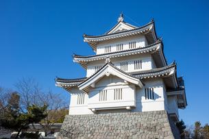 Oshi Castleの写真素材 [FYI00255780]