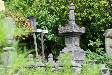 足利貞氏公の墓の写真素材 [FYI00255859]