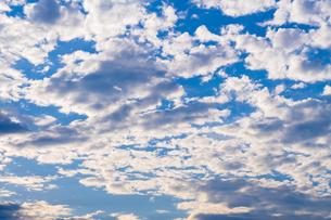 夏の空の写真素材 [FYI00255903]