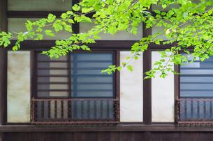 日本家屋の窓の写真素材 [FYI00255917]