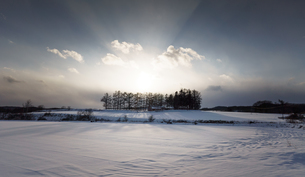 Snow hillの写真素材 [FYI00256013]