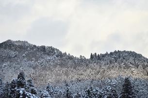 冬の写真素材 [FYI00256266]