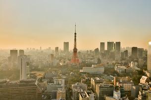 東京タワーの写真素材 [FYI00256771]