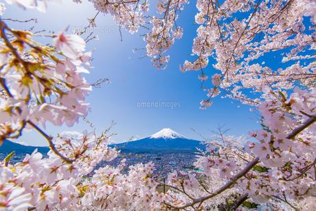 富士山の写真素材 [FYI00256894]