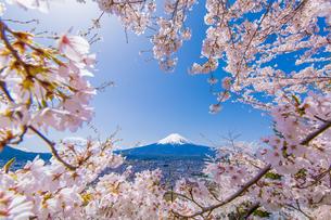 富士山の素材 [FYI00256894]
