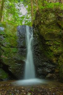 渓谷の滝の写真素材 [FYI00257016]