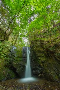 渓谷の滝の写真素材 [FYI00257020]