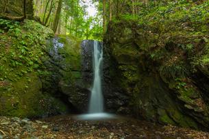 渓谷の滝の写真素材 [FYI00257027]