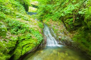 渓谷の滝の写真素材 [FYI00257035]