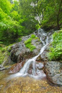 渓谷の滝の写真素材 [FYI00257041]