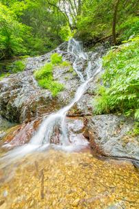 渓谷の滝の写真素材 [FYI00257046]