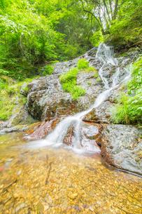 渓谷の滝の写真素材 [FYI00257050]