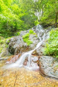 渓谷の滝の写真素材 [FYI00257051]
