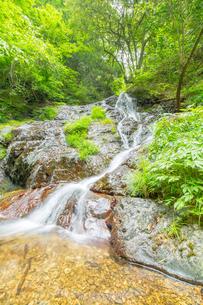 渓谷の滝の写真素材 [FYI00257052]