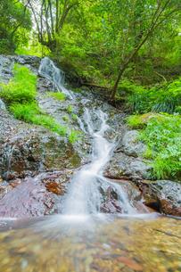 渓谷の滝の写真素材 [FYI00257053]