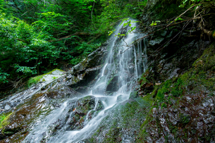 渓谷の滝の写真素材 [FYI00257054]